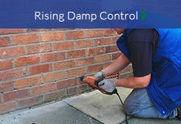 Rising Damp Control North East Damp Proofing
